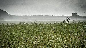 Omskifteligt efterårsvejr: Regnbyger driver hen over Fyn