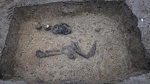Se billederne: Flere tusinde år gamle ting dukker op af jorden i Odense