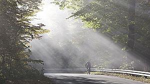 Onsdagens vejr har 'fuld solskin på programmet'