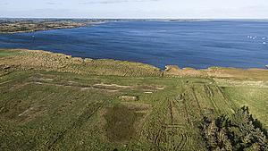 Dyr ved Odense Å kan have indtaget PFOS - nu undersøges vandet