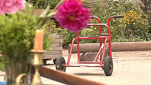 Ny Rudolf Steiner-skole åbner på Fyn