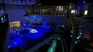 Efter coronapas: Langt mellem museumsgæster på Fyn
