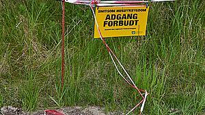 Afbrænding af nedgravede mink: Fyn er klar til flere