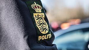 To unge varetægtsfængslet efter gaderøveri