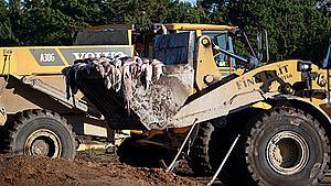 Opgravede mink fyres af ved 900 grader på Fyn